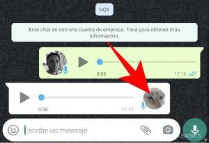 WhatsApp_audios